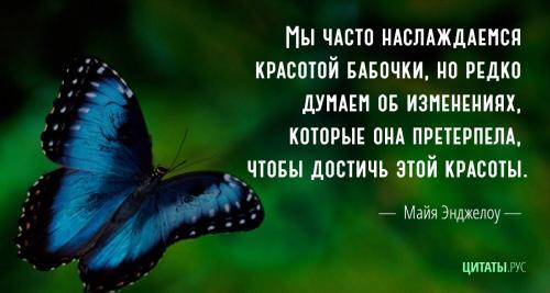 Цитата Майи Энджелоу. Бабочка.